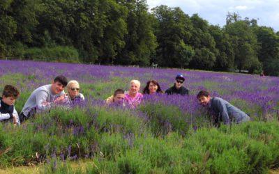 WSAPC Students Visit Lavender Fields